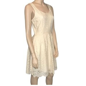 J Crew Factory Swirling Lace Fit and Flare Dress